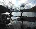 Llyn Cynwch - geograph.org.uk - 343433.jpg