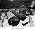 Log pond, unidentified mill, Washington, 1910 (INDOCC 35).jpg