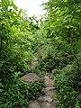 Lonar carter(Biosphere).jpg