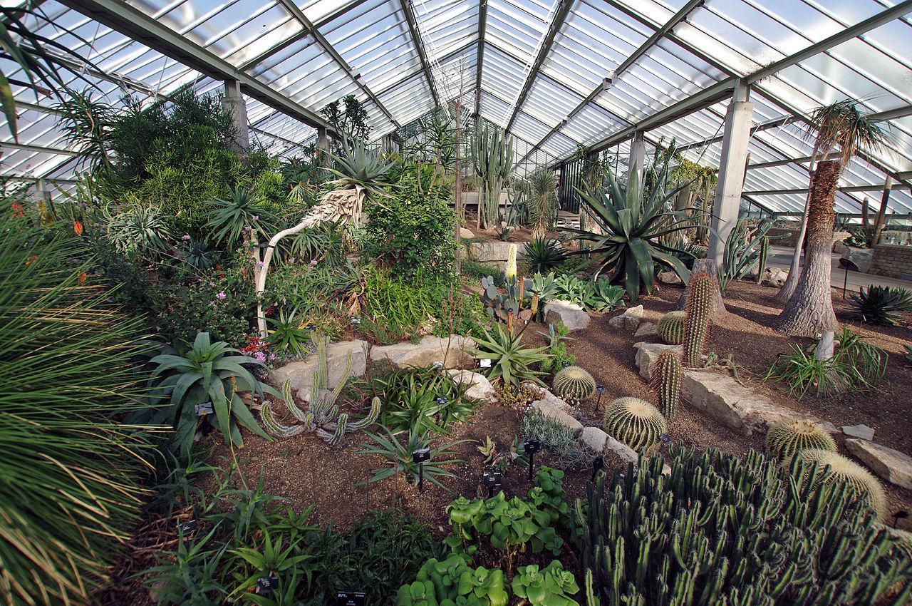 Filelondon Kew Gardens 141538jpg.