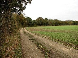 Honeypot Wood - Image: Looking south alongside Honeypot Wood geograph.org.uk 607155