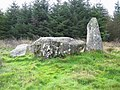 Loudon Wood Stone Circle - geograph.org.uk - 256267.jpg