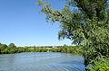 Lyubotyn Lake №4.jpg