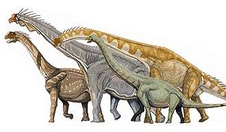 Macronaria - Several macronarian sauropods