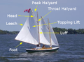 Mainsail-edges.png