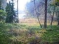 Malownicza Warmia - panoramio.jpg