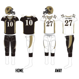 Manitoba Bisons football uniform 2008-Current.png