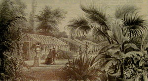 Westgate Hall, Canterbury - Masters' Exotic Nursery was on the site until 1896