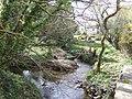 Meeting of two streams at Tregidden - geograph.org.uk - 411886.jpg