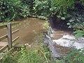 Mere Pond Weir - 2 - geograph.org.uk - 1429056.jpg