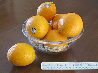 Midknight Valencia Orange - MidKnight oranges are round, frequently oblong in shape.