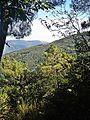 Migliana-paesaggio 12.jpg