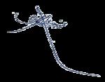 امضای محسن چاوشی