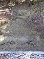 Molasse ruisseau Sauteru 29.02.2012.jpg