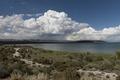 Mono Lake, a large, shallow saline soda lake in Mono County, California LCCN2013632909.tif