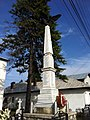 Monumentul Eroilor de la Pucheni - plan îndepărtat.JPG