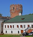 Moscow 05-2012 Novodevichy 20.jpg