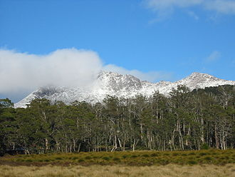 Mount Ossa (Tasmania) - Image: Mount Ossa From Pelion Plains