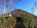 Mt. Pisenai.JPG