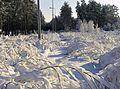 Mucenieki, Ropažu novads, Latvia - panoramio.jpg