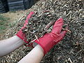 Mulch shredded yard waste.JPG