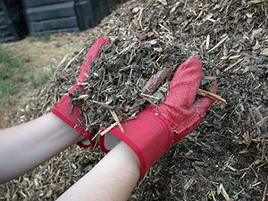 Mulch made from shredded yard waste in a munic...