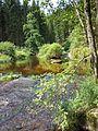 NÖ-Naturdenkmal ZT-149 Kamptal von Roiten bis Uttissenbach sl6.jpg