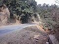 NH 907, Yamunanagar to Paonta Sahib Road.jpg
