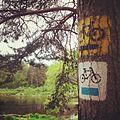 Nadwarcianski szlak rowerowy - Warta bike trail.jpg