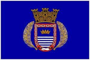 Naguabo, Puerto Rico - Image: Naguabo Flag