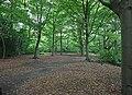 Nashdom Abbey - Woodland path - geograph.org.uk - 899983.jpg