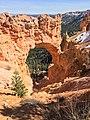 Natural Bridge at Bryce Canyon National Park.jpg
