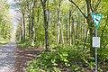 Naturschutzgebiet Königsdorfer Forst-7285.jpg