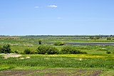 Nesvich Lutskyi Volynska-Lobanykha nature reserve-view from the northern edge of the village-1.jpg