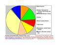 Nicollet County Pie Chart New Wiki Version.pdf