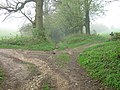 North Downs Way crosses bridleway - geograph.org.uk - 1254161.jpg