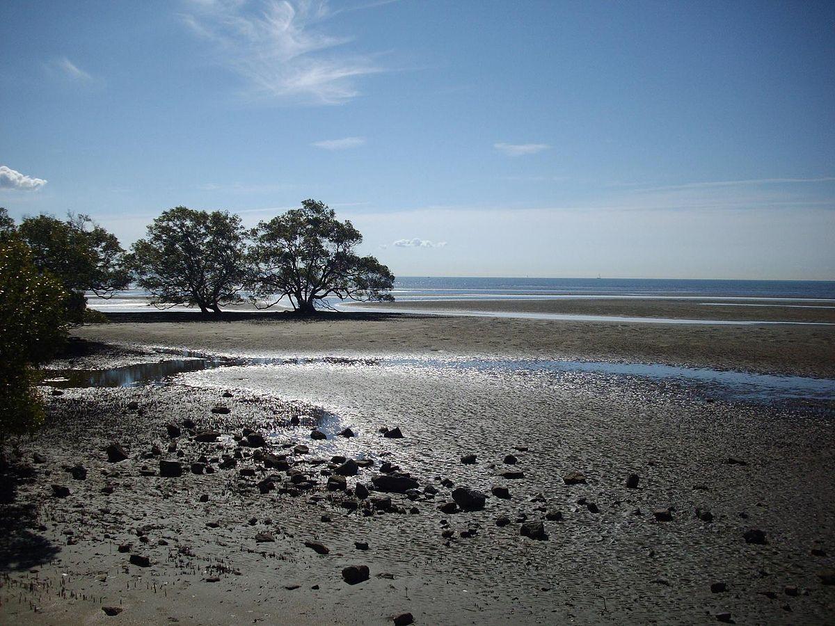 Nudgee Beach Dog Park