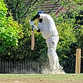 Nuthurst CC v. Henfield CC at Mannings Heath, West Sussex, England 064.jpg