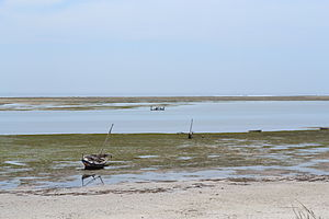 Nyali Beach from the Reef Hotel during low tide in Mombasa, Kenya 6.jpg