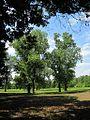 Oakhaven Park Memphis TN 012.jpg