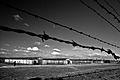 """Obóz koncentracyjny """"Auschwitz-Birkenau"""".jpg"""