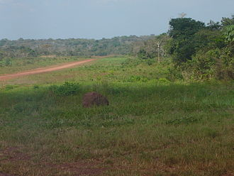 Obo - Image: Obo Mission Airfield, Central Africa Republic