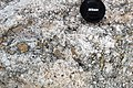 Odessa Breccia (Upper Pleistocene, 64 ka; Odessa Impact Crater, Texas, USA) 7.jpg
