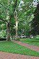 Ohio University (48241000072).jpg