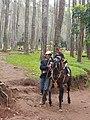 Olahraga Kuda di Batu Kuda Bandung, Jawa Barat.jpg