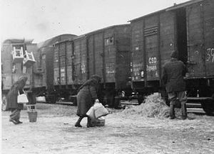 Beneš decrees - Hungarians forcibly relocated from Gúta (Kolárovo) unpacking their belongings from train in Mladá Boleslav, Czechoslovakia, February, 1947