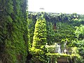 Orto botanico Brera a Milano 336.jpg