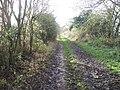 Oxfordshire Way near Gawcombe - geograph.org.uk - 1598153.jpg