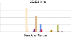 PBB GE DES 202222 s ĉe tn.png