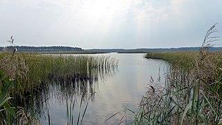 Janów Forests Landscape Park